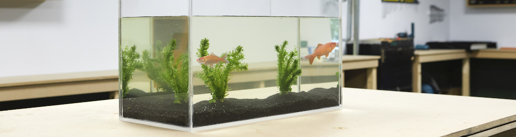 DIY aquarium from acrylic sheet