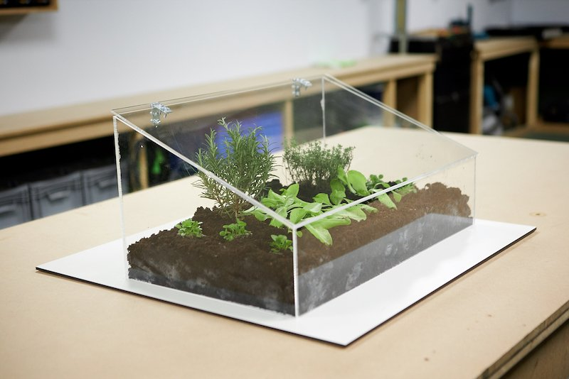 DIY mini greenhouse result with plants