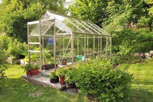 DIY Greenhouse perspex